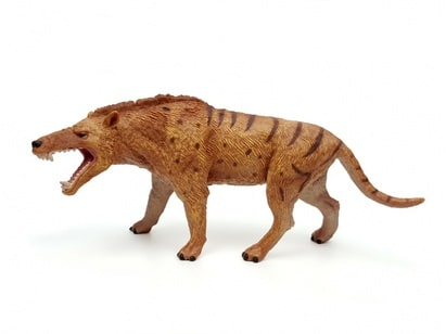 Andrewsarchus 1:20 Scale