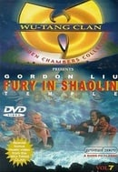 Fury in the Shaolin Temple