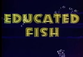 Educated Fish