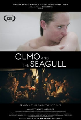Olmo  the Seagull