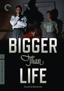 Bigger Than Life - Criterion Collection