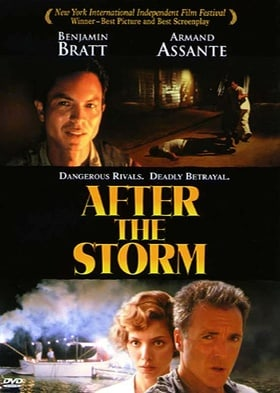 After the Storm                                  (2001)
